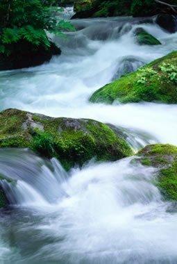 fiume lasciar essere