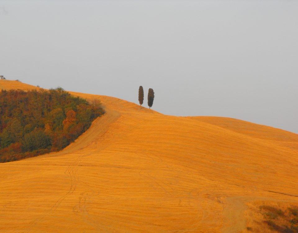 La meditazione è delizia - Mindfulness Sardegna