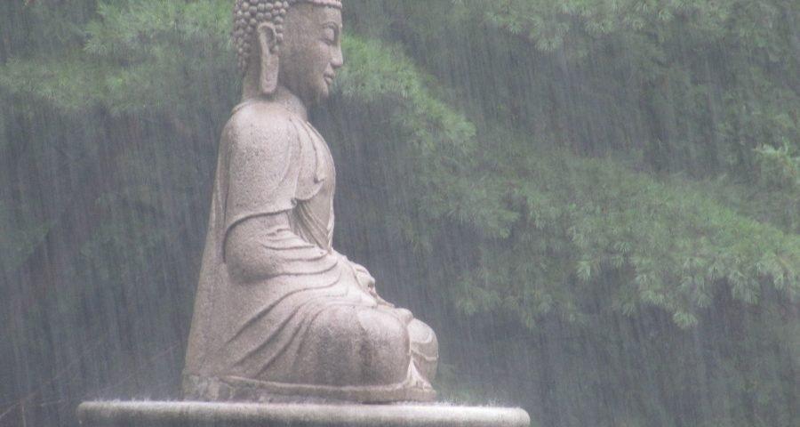 Usi l'esercizio RAIN? Una nuova pratica mindfulness - Mindfulness Sardegna