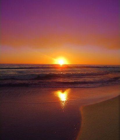 Il cuore è presenza amorevole - Quarto livello psicosomatico - Mindfulness Sardegna